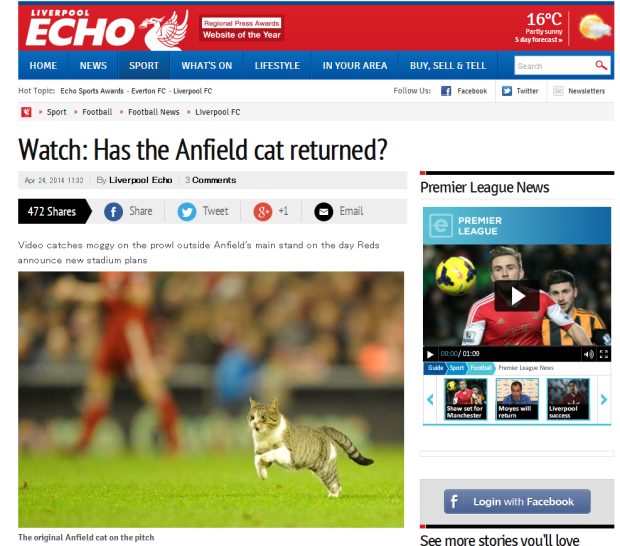 140425_Watch  Has the Anfield cat returned    Liverpool Echo